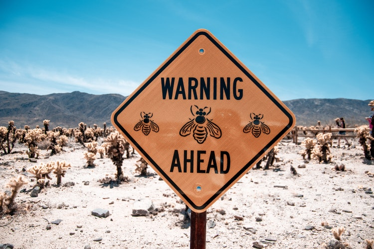 bee warning sign