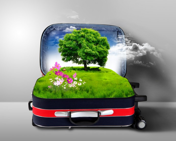 Packing Eco-Friendly