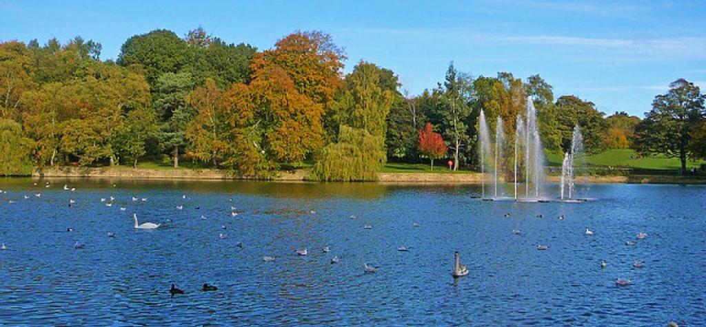 Roundhay Park.
